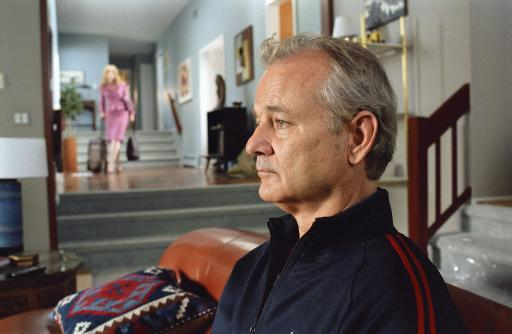 Broken Flowers Still