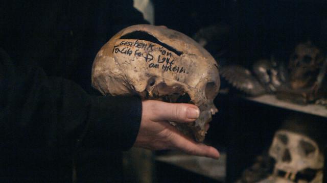 Closeup of the skull.