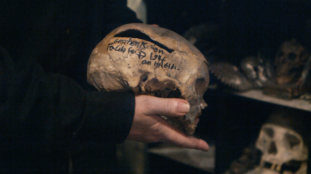 Closeup of the skull.